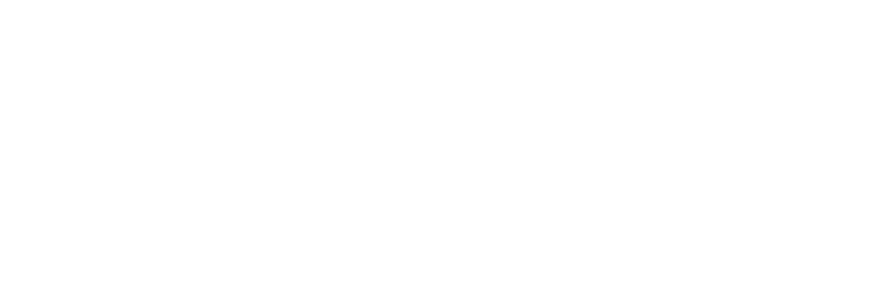 Life Strong Energy Drink logo